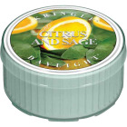 Kringle Candle Country Candle Citrus & Sage Daylight Candle Image 1