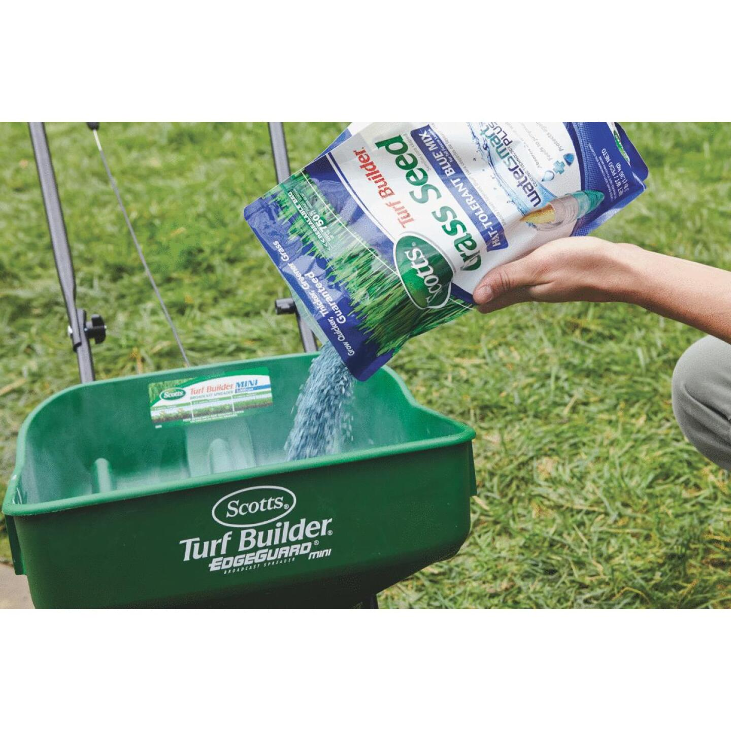 Scotts Turf Builder 3 Lb. 750 Sq. Ft. Coverage Heat Tolerant Blue Grass Seed Image 2